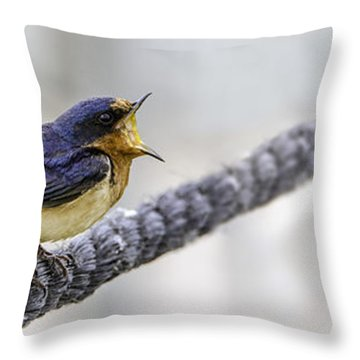 Oprah In The Marsh Throw Pillow