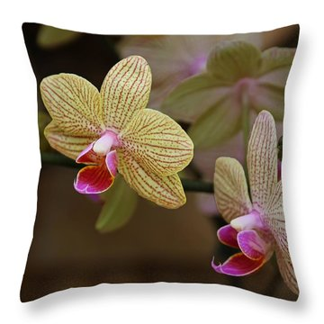 Opulent Orchids Throw Pillow