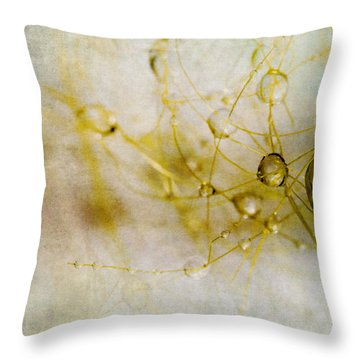 Throw Pillow featuring the photograph Opus No. 2 by Ryan Weddle