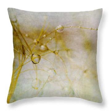 Throw Pillow featuring the photograph Opus No. 3 by Ryan Weddle
