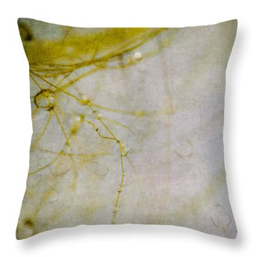 Throw Pillow featuring the photograph Opus No. 4 by Ryan Weddle