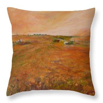 Orange Afternoon  Throw Pillow