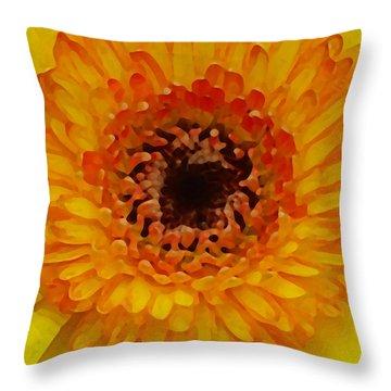 Orange And Black Gerber Center Throw Pillow by Amy Vangsgard