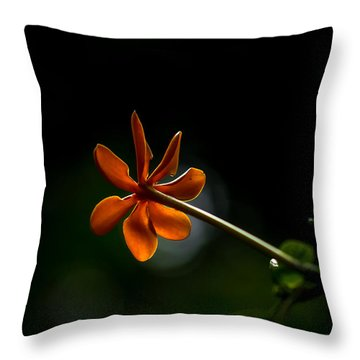 Orange And Black Throw Pillow by Ramabhadran Thirupattur