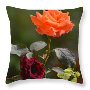 Orange And Black Rose Throw Pillow