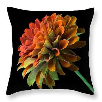 Orange And Green Zinnia  Throw Pillow