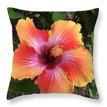 Orange And Red Beauty Throw Pillow