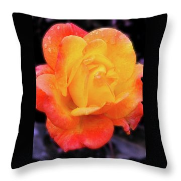 Throw Pillow featuring the photograph Orange And Violet Rose by Howard Bagley