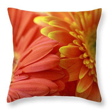 Orange And Yellow Daisies Throw Pillow