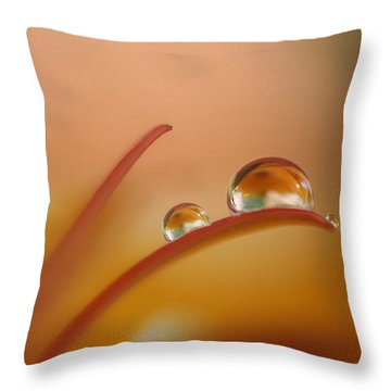 Orange Arc Trio Throw Pillow
