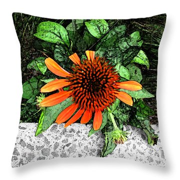 Throw Pillow featuring the photograph Orange At Highline Nyc by Joan  Minchak