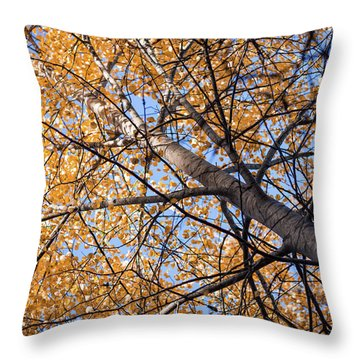 Orange Autumn Tree. Throw Pillow