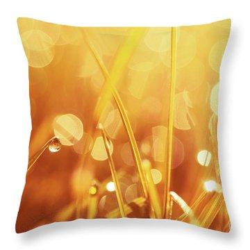 Orange Awakening Throw Pillow by Aimelle