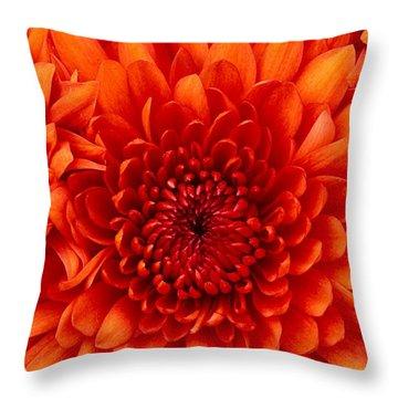 Orange Bloom Throw Pillow