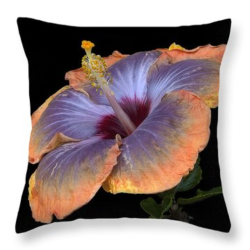Orange-blue Hibiscus Throw Pillow