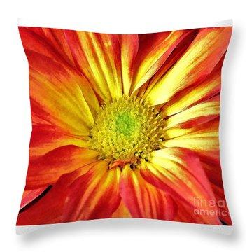 Throw Pillow featuring the photograph Orange Burst by Allen Beatty