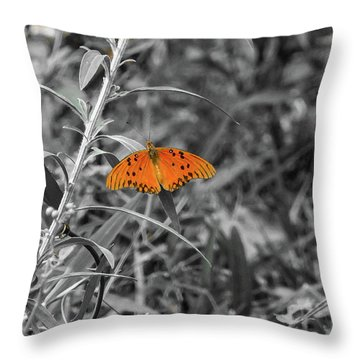 Orange Butterfly In Black And White Background Throw Pillow