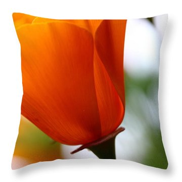 Orange California Poppy . 7d14789 Throw Pillow