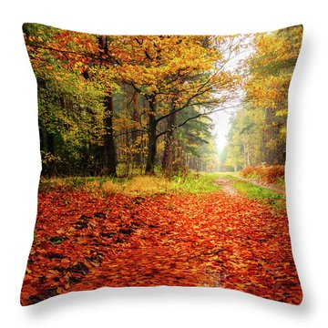 Throw Pillow featuring the photograph Orange Carpet by Dmytro Korol