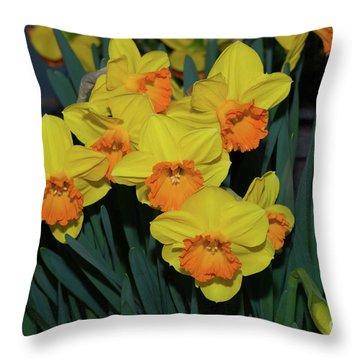Orange-centered Daffodils Throw Pillow