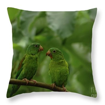 Orange-chinned Parakeets-  Throw Pillow