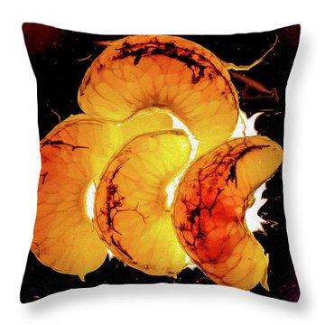 Orange Choc Throw Pillow