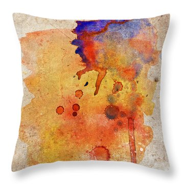 Orange Color Splash Throw Pillow