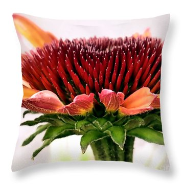 Orange Coneflower Throw Pillow by Janice Drew