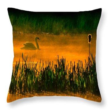 Orange Crush 2 Throw Pillow