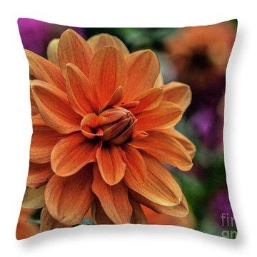 Orange Dahlias Throw Pillow