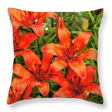Throw Pillow featuring the photograph Orange Day Lillies by Mary Jo Allen