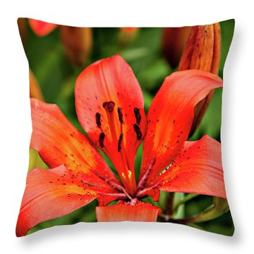 Throw Pillow featuring the photograph Orange Day Lilly Single by Mary Jo Allen