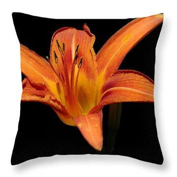 Orange Day-lily Throw Pillow