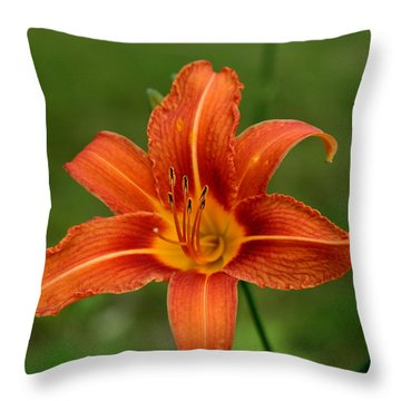 Orange Day Lily No.2 Throw Pillow by Neal Eslinger