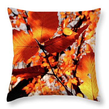 Throw Pillow featuring the photograph Orange Fall Leaves by Meta Gatschenberger