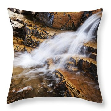 Orange Falls Throw Pillow by Chad Dutson
