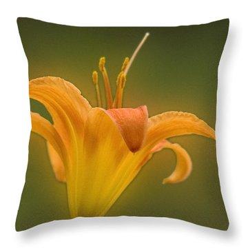 Orange Flower Head  Throw Pillow
