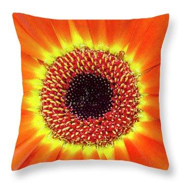 Orange Flower Macro Throw Pillow