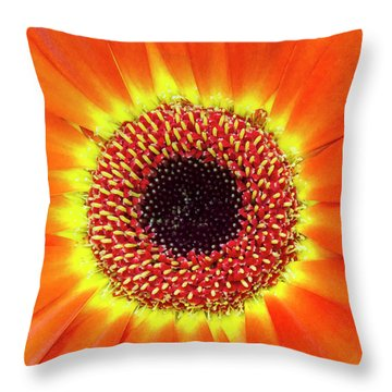 Orange Flower Macro Throw Pillow