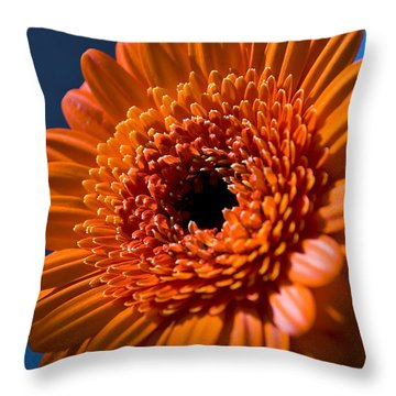 Orange Flower Throw Pillow by Svetlana Sewell