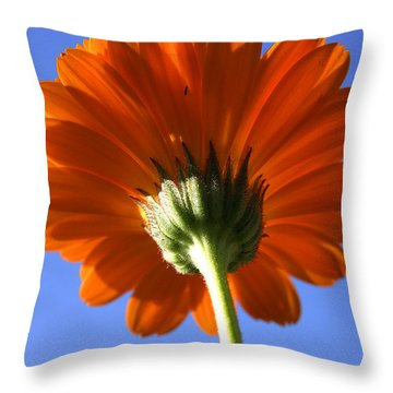 Orange Gerbera Flower Throw Pillow