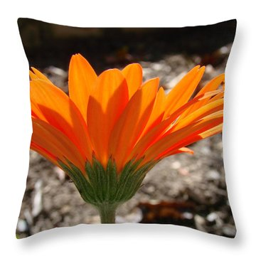 Orange Glory Throw Pillow