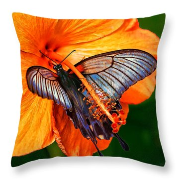 Orange Hibiscus Butterfly Throw Pillow by ABeautifulSky Photography