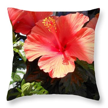 Throw Pillow featuring the photograph Orange Hibiscus by Kay Gilley