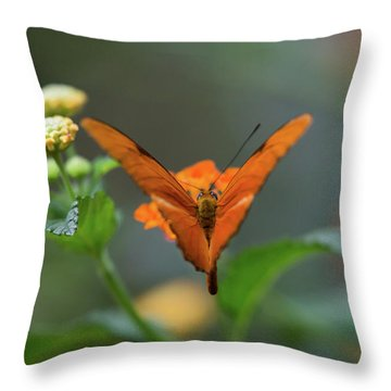 Orange Is The New Butterfly Throw Pillow