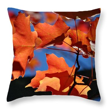 Orange Leaves Throw Pillow by Mikki Cucuzzo