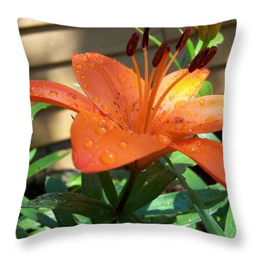 Throw Pillow featuring the photograph Orange Lilly by Richard Ricci