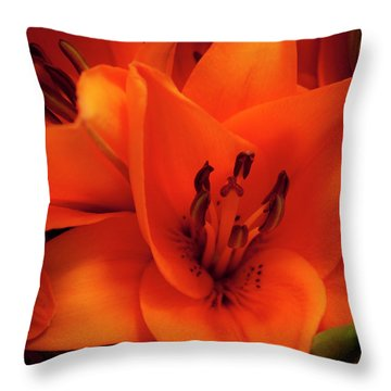 Orange Lily Throw Pillow by David Patterson