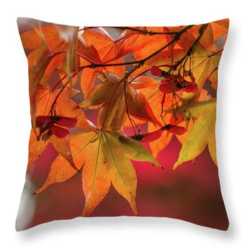 Throw Pillow featuring the photograph Orange Maple Leaves by Clare Bambers