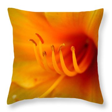 Orange Marmalade 2 Throw Pillow by David Dunham